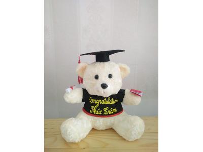Gấu Bông tốt nghiệp đội mũ ngồi