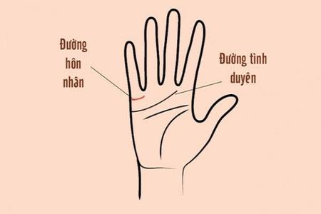 [Giải Đáp] Chỉ tay trái phải của con trai đàn ông nói lên điều gì