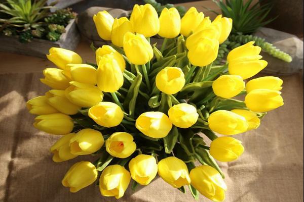 hoa sinh nhật dành cho người lớn tuổi