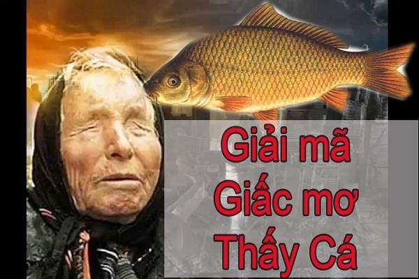 Nằm mơ thấy bắt được nhiều cá nên đánh đề con gì số bao nhiêu