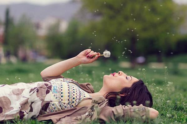 ý nghĩa của hoa bồ công anh trong tình yêu